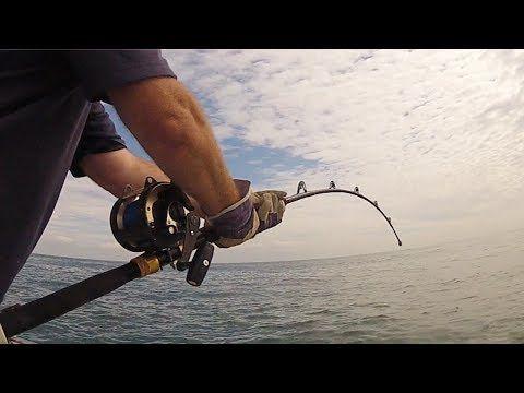 SHARK FISHING MADNESS! 4 BIG SHARKS in a ROW!