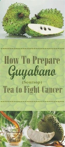 Theres multiple things to do and try to fight cancer try this soup and How To Prepare Guyabano (Soursop) Tea To Fight Cancer - Read more