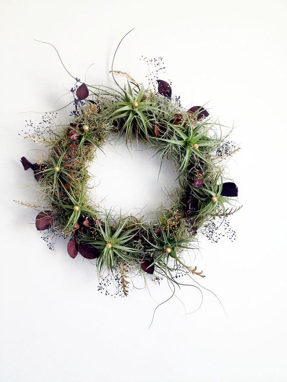 living wreath // air plant wreath // tillandsia by by peacocktaco, $175.00
