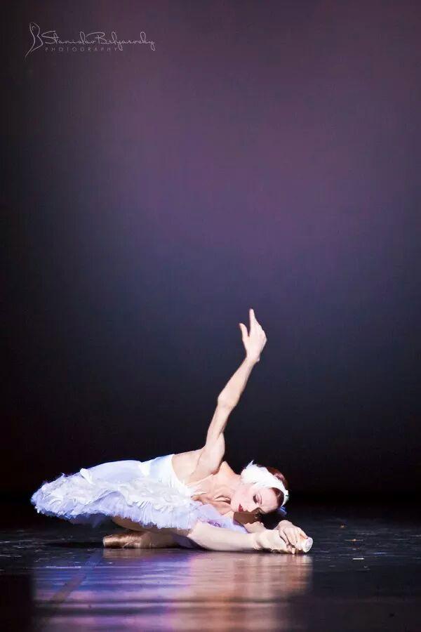 Mejores 80 imágenes de the dying swan en Pinterest | Baile, Ballet y ...