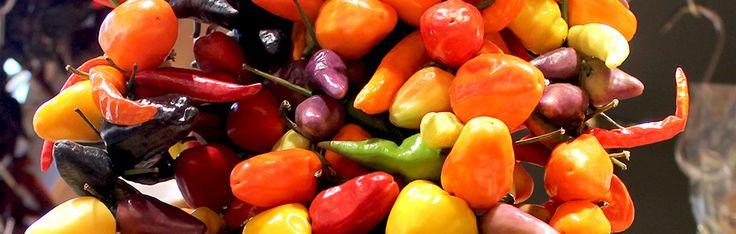 Punaisten chilien lisäksi tunnetaan keltaisia, vihreitä, violetteja ja lähes mustanpuhuvia lajeja ja lajikkeita. Muodoltaan chilit voivat olla pyöreitä, pitkulaisia, kapeita tai leveämpiä ja pinnaltaan sileitä, mutkaisia tai jopa ryppyisiä..