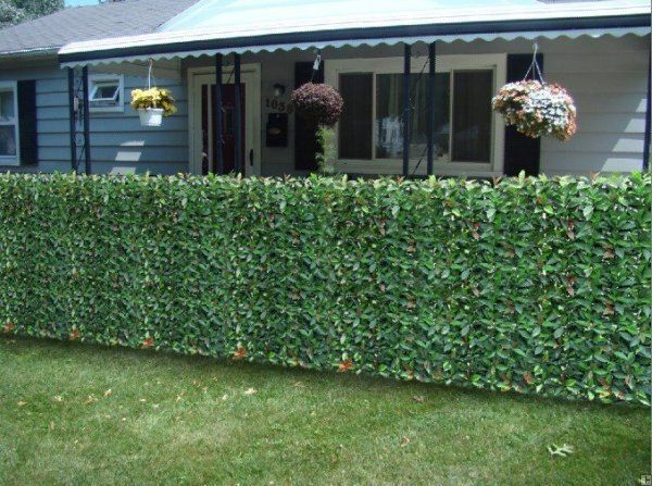 Nice 10 DIY Cheap Garden Fencing Projects | EASY DIY And CRAFTS