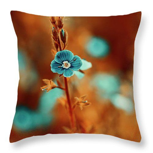 Beautiful Throw Pillow featuring the photograph Small Blue Forget-me-not On Orange by Oksana Ariskina. Small blue wildflower forget-me-not, closeup view on orange brown toned background. Available as mugs, posters, greeting cards, phone cases, throw pillows, framed fine art prints, metal, acrylic or canvas prints, shower curtains, duvet covers with my fine art photography online: www.oksana-ariskina.pixels.com #OksanaAriskina