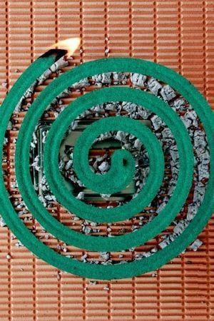 Spirale anti moustiques : 31 astuces et remèdes efficaces pour dire adieu aux moustiques - Linternaute