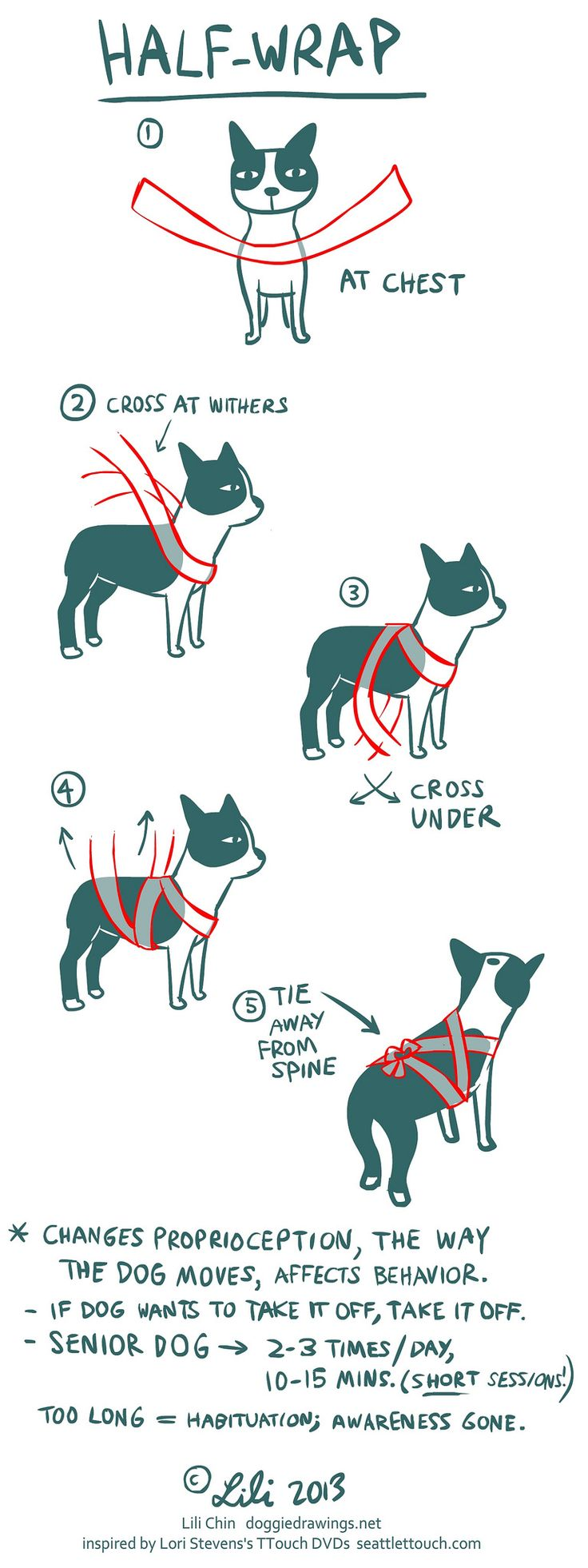 Homemade Thundershirt - Help alleviate your dog's noise phobia fears (fireworks, thunderstorms, etc.) with just a simple Ace bandage!