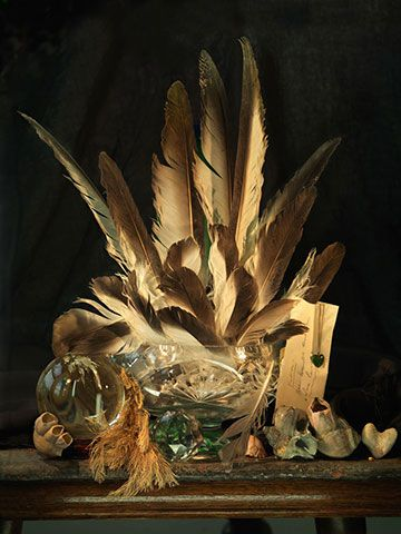 Fiona Pardington Still Life with Albatross Feathers, a Letter and a Pounamu Heart, Ripiro 2014