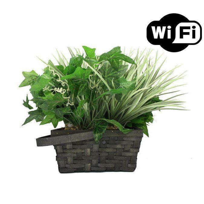 Plant Hidden Camera Buy Online – SpyGarage.com