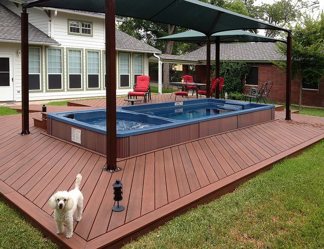 A friendly Guard-Poodle keeps watch over this 19' Dual Temperature Endless Pools Swim Spa.