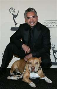 Cesar Milan is awesome!  The Dog Whisperer!