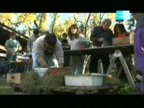 Curso de huerta Orgánica - 6 (La huerta en macetas) 2 - YouTube
