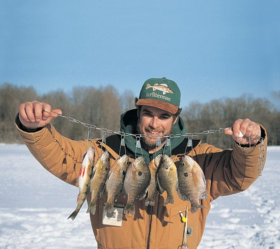 17 best images about ice fishing on pinterest lakes for Ice fishing bluegill