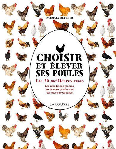 Choisir et élever ses poules: Les 100 meilleures races de Patricia Beucher http://www.amazon.fr/dp/203587906X/ref=cm_sw_r_pi_dp_NTzRwb0XCXNXR