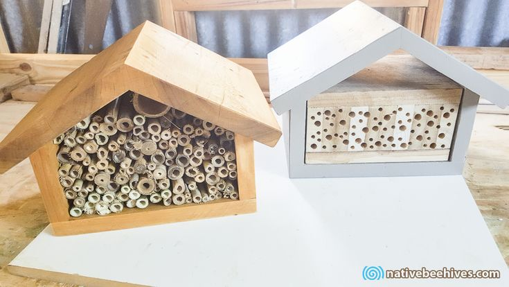 Native Bee Hives – Australian Native Stingless & Solitary Bees