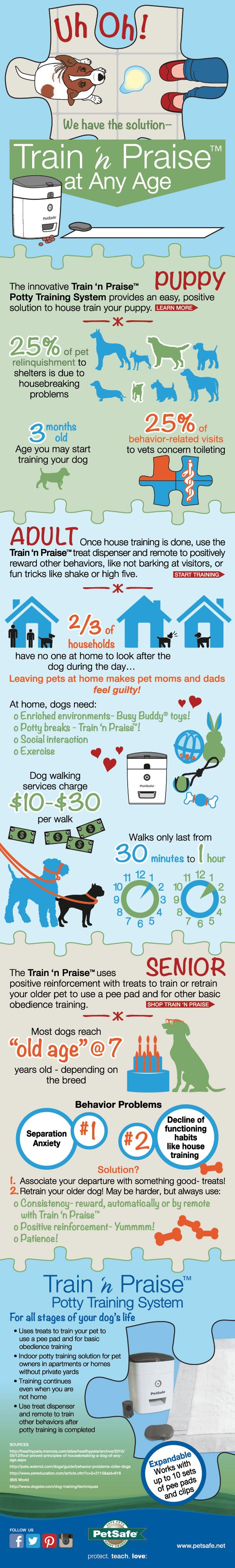 How To House Train A Pet At Any Age #infographic