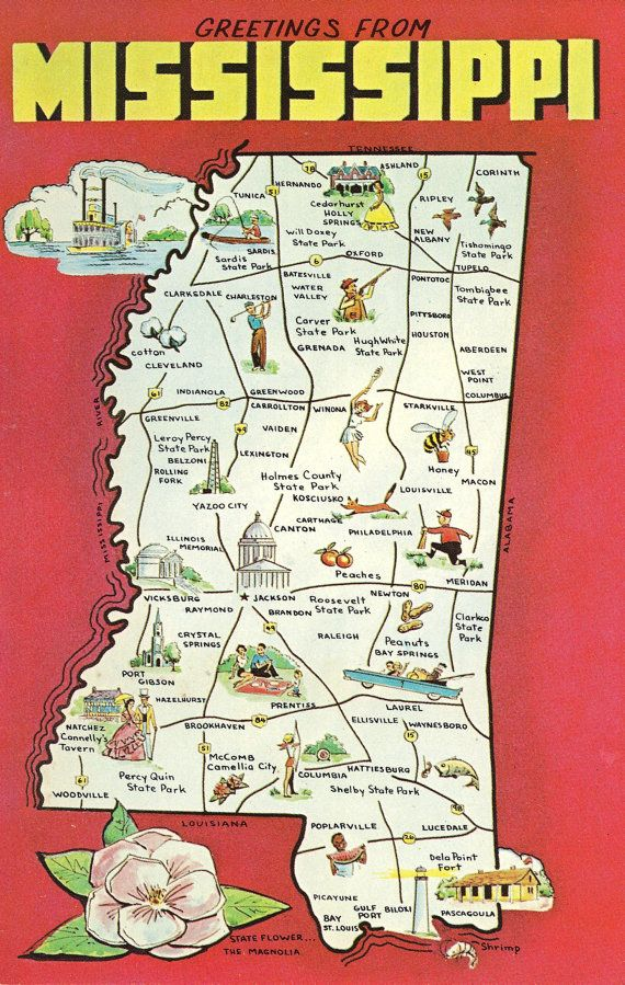 Best Mississippi Magnolia State Images On Pinterest - Mississippi state map usa