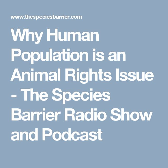 an argument that animals also have rights Once animals have been excluded from the moral community, humans have only a limited obligation towards them on this argument, we certainly would not need to grant animals all normal human rights if animals do not have the same rights as humans, it becomes permissible to use them for research purposes.
