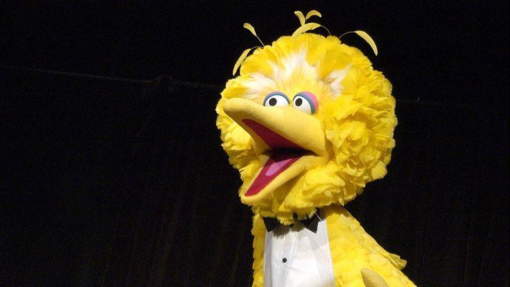 Incredible: The Man Inside Big Bird Has Revealed ...    ClickHole
