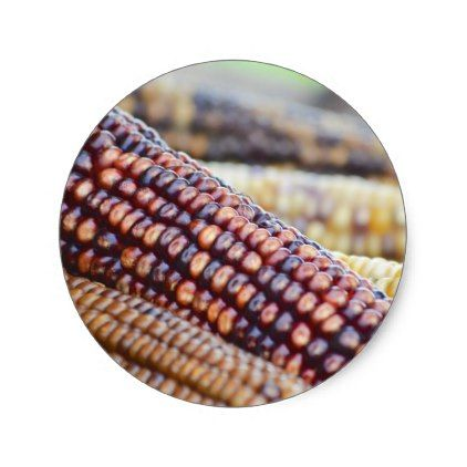 Flint Ornamental Corn Classic Round Sticker - thanksgiving stickers holiday family happy thanksgiving