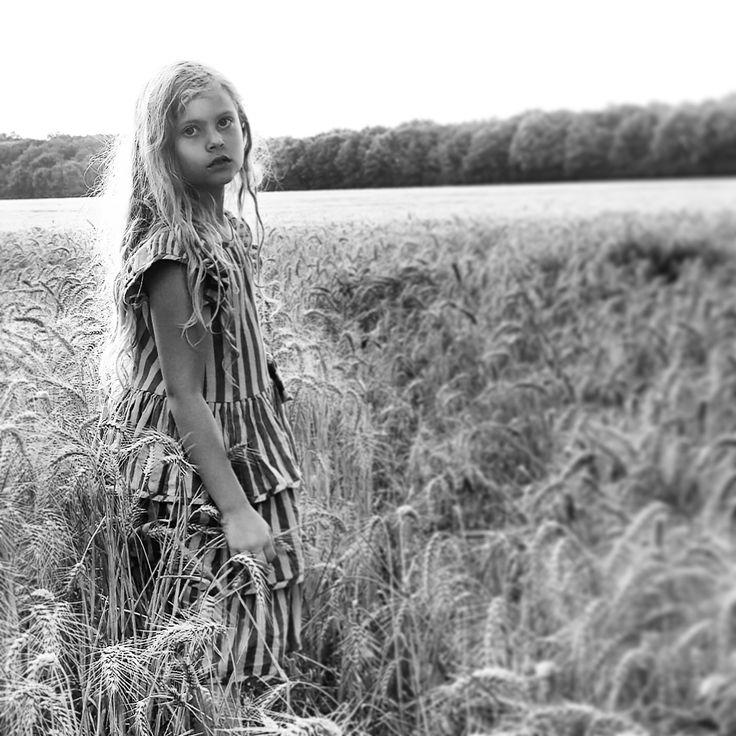 Fields of gold. Norwegian Photographer Marit Junge