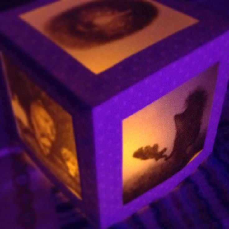 "фонарик Oolamp ""Ёжик в тумане""  #paper #lantern #handcraft #handmade #gift"