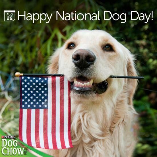 Happy National Dog Day <3