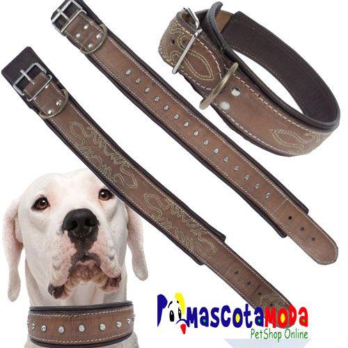 1000 images about tra llas correas y collares para perro for Collares para perros