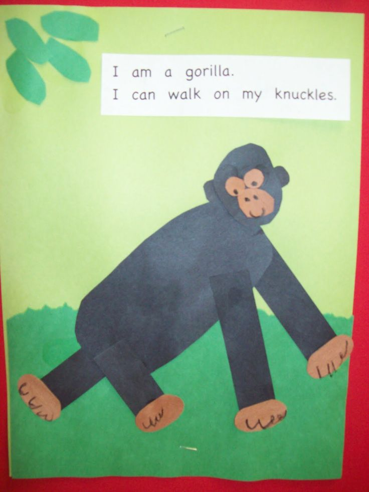 Based on the book One Gorilla by Atzuko Morozumi. As you read the story have the students use counters to show how many things the child ...
