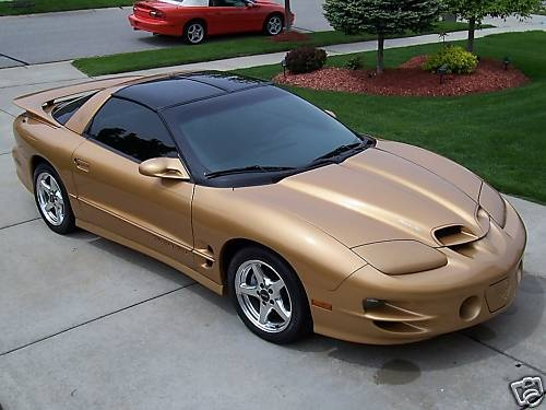 Sport Metallic Gold Ws6 1 Of 34 Firebird Pinterest
