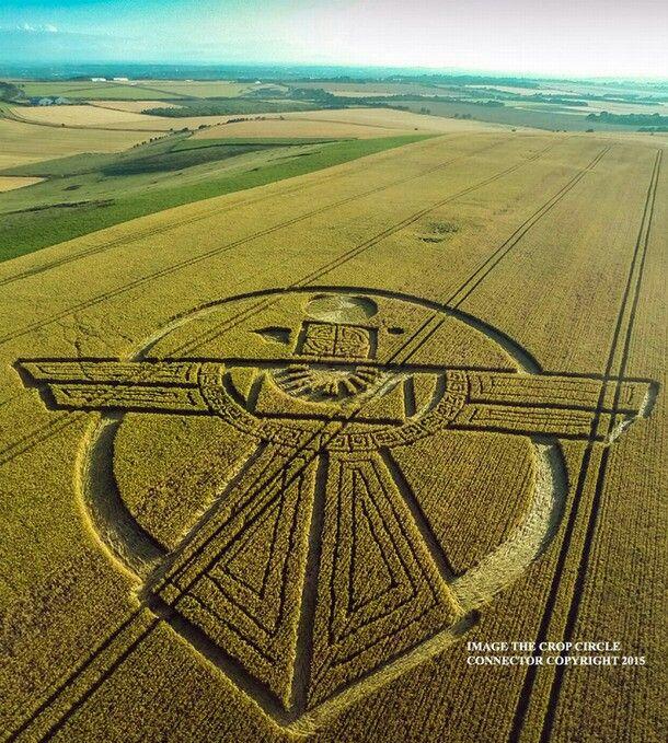 Crop Cirlcle en Wiltshire , Reino Unido 25-7-2015