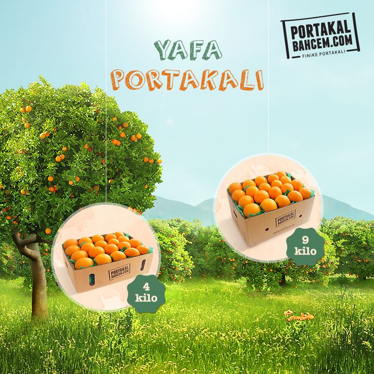 İki Hecede Söylenir, Tek Hamlede Yenir :)  Yafa portakalında son hafta! ► http://www.portakalbahcem.com/kategori/dalindan-tazecik-portakal/