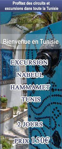 Transferts Aéroport Tunis: excursion-tunis-hammamet-nabeul