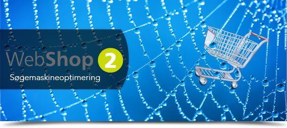 En vejledning til søgemaskineoptimering af Webshop 2: http://artikler.medialine.dk/soegemaskineoptimering-seo-af-webshop-2/