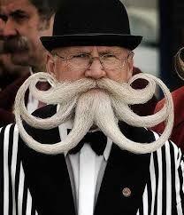 Resultado de imagen para imagenes de bigotes