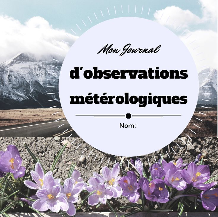 Weather Journal Resource Preview