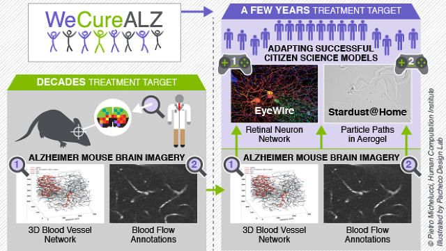 How The Global Hive Mind Is Teaming Up To Find A Cure For Alzheimer's - Fast Company