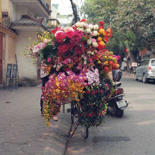sea of flowers