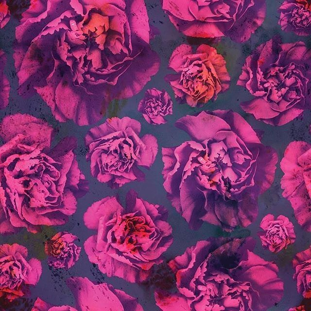 'Blooming Carnation'  |  Susanne Kasielke|  patternbank.com/susannekasielke