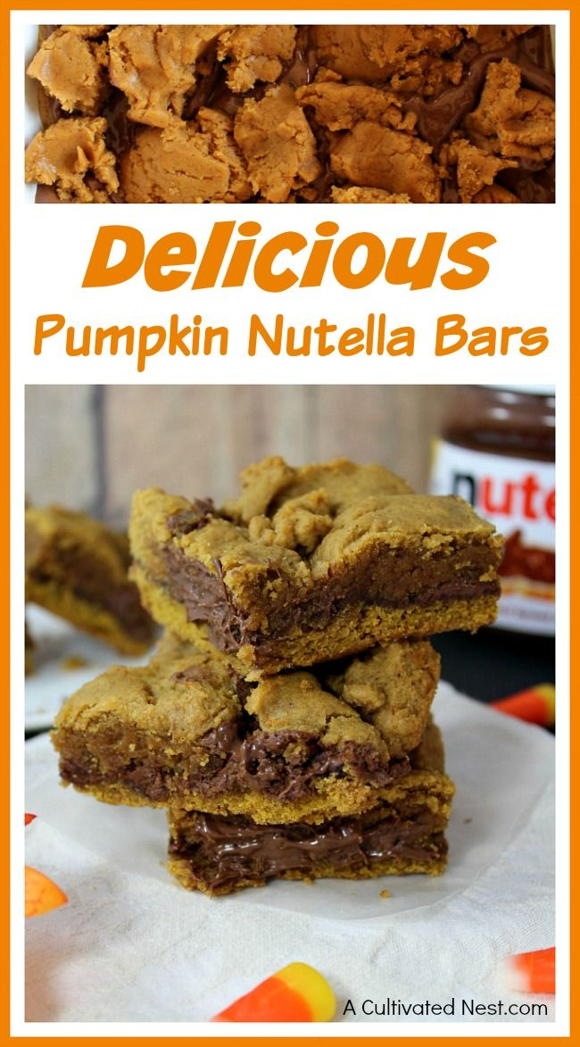 If you love Nutella and pumpkin, you're sure to love these delicious pumpkin Nutella bars!  What could be better than rich pumpkin bars filled with gooey Nutella! This recipe makes a great fall treat, and would be a hit at any party!