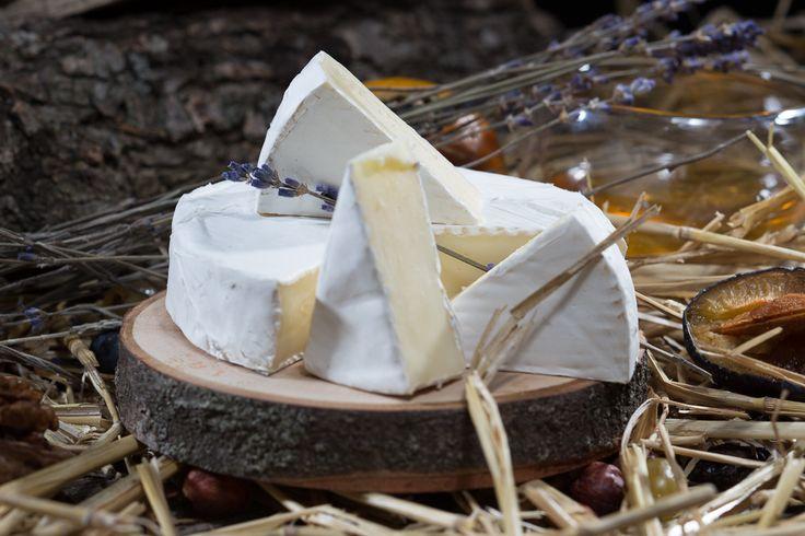 «Камамбер Лефкадии» — особенный сыр. Его производят строго в соответствии с традиционным рецептом, однако с учётом российских реалий. В первую очередь, речь здесь идёт о сырье. Во Франции для приготовления этого сыра используется сырое молоко, то есть прямо из-под коровы. В России изготовление сыра из молока, не прошедшего пастеризацию, запрещено законом. Становится ли вкус «Камамбера Лефкадии» от этого хуже? — Нет, он просто становится несколько отличным.