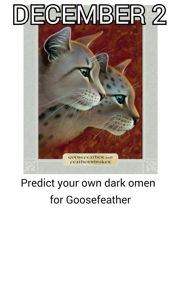 Haven't gotten there yet.. But I predict that Goosefeather will go to the Dark Forest when he dies.