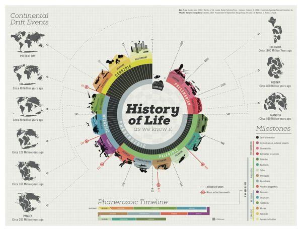 History of Life by juan David Martinez, via Behance