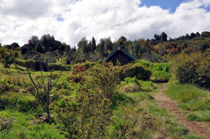 Paul Coleman y Konomi Kikuchi, llegaron a esta zona en 2007, para cumplir su visión de construir un hogar utilizando los principios de sustentabilidad y permacultura.