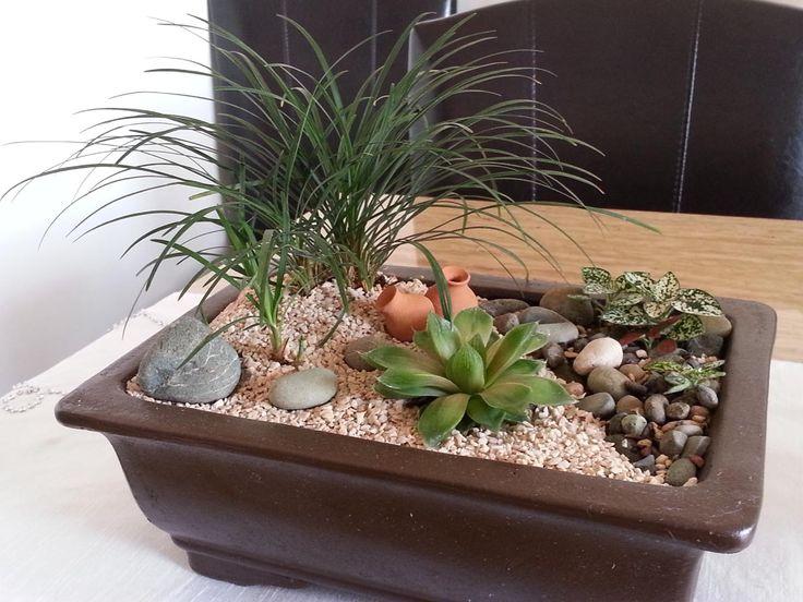 Jardines pequeños formatos   Pellizcados