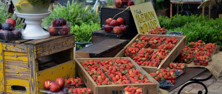 FreshFarm er en hjemmeside og en app, udvikletaf Lone Sevel og Maria Jensen. På FreshFarmkan du finde gårdsalg og markeder, tæt på naturen med lokalefødevarer i sæson.På et oversigtskort kan du se, hvor alle gårdene er placeret og du får en rutebeskrivelse med kørselsanvisning,
