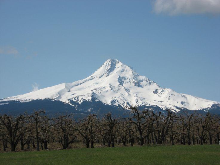 Mt. Hood, OR: Mt Hoods Oregon, Favorite Things, Favorite Places, Mthood, Mount Hoods, Volcanoes, Front Window, My Buckets Lists, Favorite Mountain