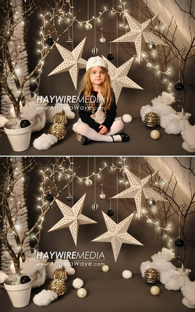 Winter Wonderland Digital Photography Backdrop for sale.