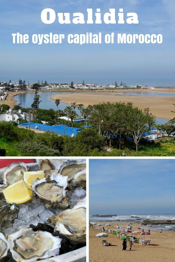Oualidia The Oyster Capital Of Morocco North Africa Travel