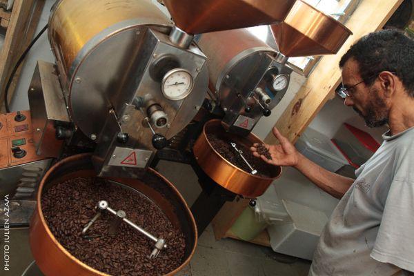 Le Domaine des Caféiers - Le domaine des caféiers vous propose de découvrir le café bourbon pointu. La caféière, d'une surface d'un hectare, plantée il y a huit ans, cultivée avec le souci constant ...