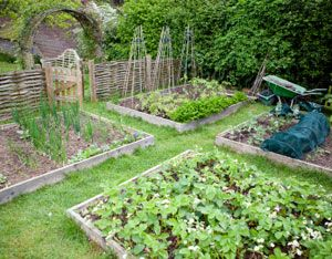 Five Tips For Getting Started With The Vegetable Garden Planner