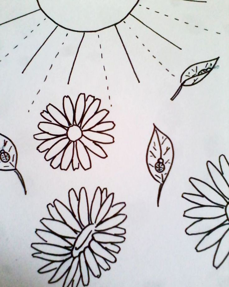 Daisies and ladybugs. Black markerpen on paper.